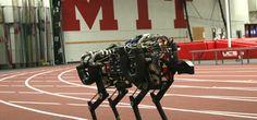 MIT I Il ghepardo robot Cheetah 2 salta gli ostacoli