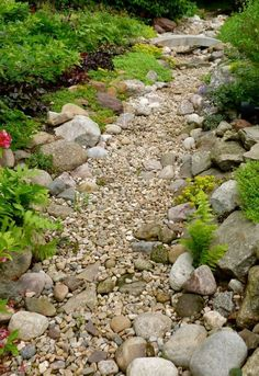 Gorgeous Dry Creek Bed Design - Style Estate -like size and mix of stone Dry Riverbed Landscaping, River Rock Landscaping, Home Landscaping, Landscaping With Rocks, Front Yard Landscaping, Florida Landscaping, Landscape Design, Garden Design, Dry Creek Bed