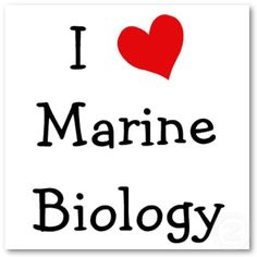 Marine Biology ♥ I'm apparently not the type to like this kind of stuff.*shrug* But I love it.
