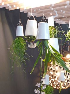 hanging garden. LOVE so trying this