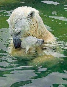 I love you mom. Very cute.