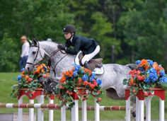 Lillie Keenan and Pumped Up Kicks jump to first Grand Prix win.   Ogilvy, Equestrian, Style, Half Pad, Horse, Horse Show, Saddle Pad, Hermes