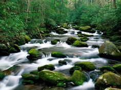 Водоемы - обои для рабочего стола: http://wallpapic.ru/landscapes/reservoirs/wallpaper-28980