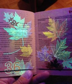 Ideas:Passport181 Hidden Illustrations Revealed Under Uv Lighting By Canadas Newest Passport Designs Ideas Canadas Newest Passport Designs Graphic Design Hidden Illustrations Revealed Under UV Lighting by Canada's Newest Passport Designs