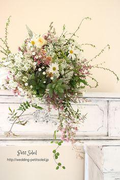 多肉植物ワイルドブーケ succulent plants bouquet