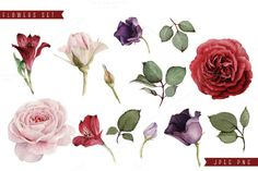Greeting cards and Flowers by ollalya on @creativemarket