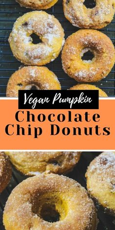 Baked Vegan Pumpkin Chocolate Chip Donuts with a cinnamon sugar topping are an irresistible fall treat! These vegan donuts are a perfect afternoon snack or dessert. #veganpumpkin #vegandonuts #donuts #pumpkindonuts #veganpumpkindonuts #chocolatechipdonuts #chocolatechipdonuts