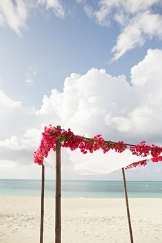 Gorgeous bougainvillea canopy #beach #wedding For more ideas on how to decorate your beach wedding ceremony, have a look here: http://www.beachwedding-guide.com/beach-wedding-ceremony-decor.html