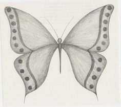 dibujo de una mariposa, HORTIGUELA