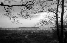 2014_March_Lauttasaari_Nikon-FA_Nikkor-50mm_Polypan-F_032
