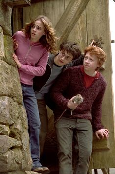 harry ron hermione prisoner of azkaban