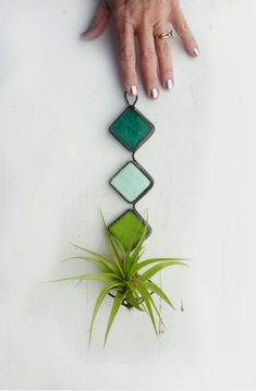 Spire Trends: Stained Glass Air Plant Holder Mod Trio with Mint