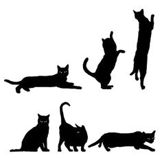 Image result for black cat drawing