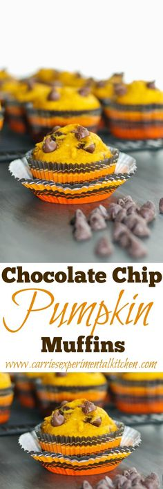 Celebrate all things Fall with these Chocolate Chip Pumpkin Muffins. At only 223 calories each, they make a tasty snack or quick, on the go breakfast.