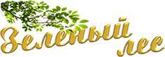 Мебельный, клееный щит, материал: сосна – купить в Уфе | Зеленый лес