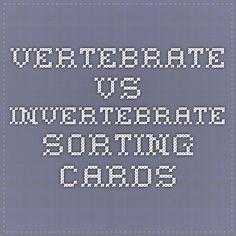 vertebrate vs invertebrate sorting cards Vertebrates And Invertebrates, Animal Classification, Teaching Materials, Sorting, Science, Education, School, Plants, Cards