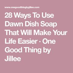 28 Ways To Use Dawn Dish Soap That Will Make Your Life Easier · One Good Thing by Jillee