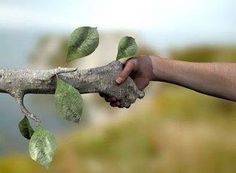 12 Simple Ways To Embrace Nature