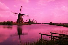 Dutch windmills lined up alongside the canal in Kinderdijk, the Netherlands