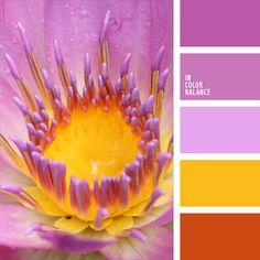 azafranado, color naranja señales, color orquídea, colores para la decoración, elección del color, marrón herrumbroso, naranja herrumbroso, paletas de colores para decoración, púrpura pálido, selección de colores, tonos rosados.