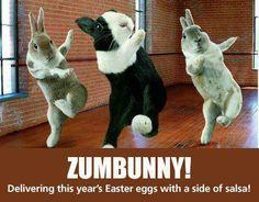 Funny Memes Zumba : Pin by zumba world on zumba fun zumba fitness
