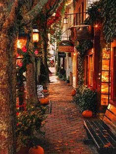 Autumn Aesthetic, City Aesthetic, Christmas Aesthetic, Beautiful Places, Beautiful Pictures, Autumn Scenes, Autumn Cozy, Autumn Fall, Autumn Nature