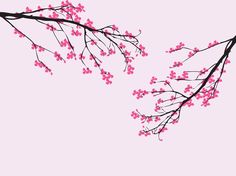 Spring and nature vector graphics of blooming cherry branches. Sakura tree, dark bark color, crooked branches, small twigs and many brightly colored blossoms and petals. Free vector for spring, nature, trees, sakura, cherry blossom, Japan, Japanese, floral, flowers and environment designs. Blooming Cherry Tree by treevectors.com