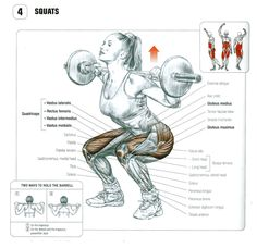 Squat anatomy. #2 bar placement for powerlifters