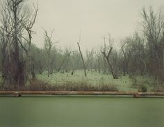 Richard Misrach, 'Swamp and Pipeline, Geismar, Louisiana,' 1998, Robert Mann Gallery
