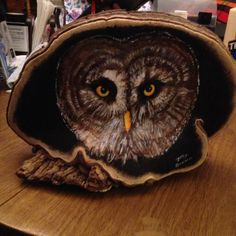 Owl painted on a shelf fungus. Acrylic paints. Painted by Jory D. Brown.