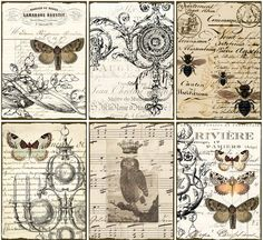 INSTANT DOWNLOAD diGital CoLLaGe Sheet ViNtaGe EpHeMera PaPer OwL BuTTerflieS PriNtaBle VintAge LaBelS FreNch SCriPts StaiNed, No. 16