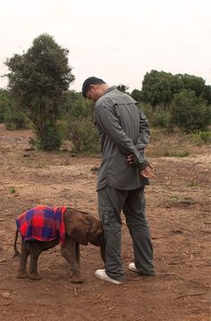 Yao Ming and a baby elephant || Not sure whether to post in Elephants or Basketball. The 7-6 Chinese basketball player standing next to a baby elephant. -G
