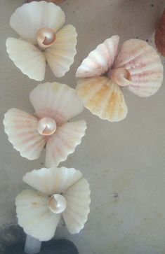 Farmhouse Chic Bathroom Decor Ceilings 57 New Ideas dekoration muscheln Seashell Art, Seashell Crafts, Beach Crafts, Modern Rustic Chandelier, Coastal Chandelier, Seashell Projects, Shell Flowers, Glass Floor, Chic Bathrooms