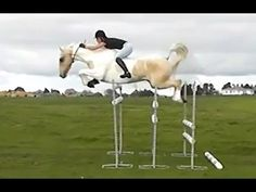 wow. bareback and bridle-less jumping!    This horse trusts her SO much!