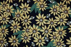 Black Eyed Susans with almost white eyes.