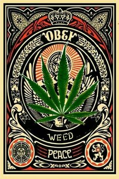 Obey the power of weed! Marijuana helps relieve depression, stops pain, and generally improves your mood. This book has great recipes for easy marijuana oil, delicious Cannabis Chocolates, and tasty Dragon Teeth Mints: MARIJUANA - Guide to Buying, Growing, Harvesting, and Making Medical Marijuana Oil and Delicious Candies to Treat Pain and Ailments by Mary Bendis, Second Edition.  Just $2.99.   www.muzzymemo.com