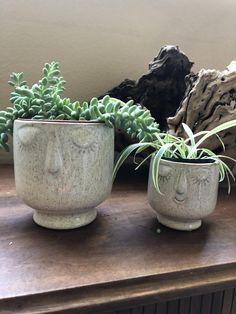 Friendly face schubsen | Etsy Face Planters, Indoor Planters, Planter Pots, Vintage Family Photos, Freundlich, Air Plants, Flower Pots, Xmas, Lounge