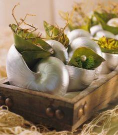 Elegant sea decorating #Ideas para #decorar con #plantas #home_plants