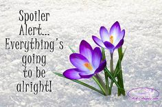 Spoiler Alert... Everything's going to be alright!  #inspiringquotes