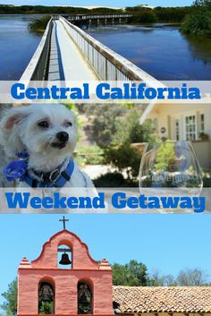 Travel the World: A guide to a Central California weekend getaway in Santa Maria with lots of things to do like hike, visit one of California's best California missions, and dog friendly wine country. #California #travel