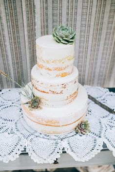 Naked wedding cake with succulent accents --Madie Allen Photography