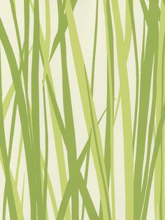 Pattern Repeat 25.19 inches  Drop Match, Width 27 inches  fpc- Washable, Strippable, NonPasted  Screen Printed . GRASS  Also known as Seabrook pattern SBK14267    $40.95