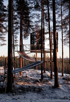 Treehotel in Harads in the north of Sweden: the Mirrorcube by Tham & Videgard architects