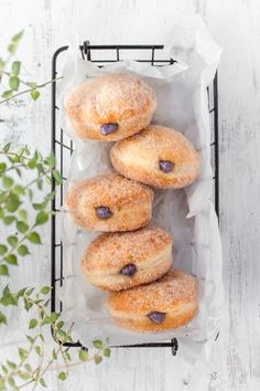 Super fluffy melt-in-your-mouth doughnuts, or donuts, that come together in a bread machine! They're filled with a delicious blueberry cream cheese filling! #doughnuts #donuts #blueberrydonuts #blueberrycreamcheese Yeast Donuts, Baked Donuts, Doughnuts, Delicious Donuts, Yummy Food, Delicious Recipes, Blueberry Donuts, Sprinkle Donut, Chocolate Donuts