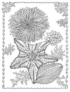 377 Best Coloring Pages To Print Underwater Images Coloring