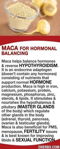 Maca helps balance hormones & reverse hypothyroidism. It is an endocrine adaptogen consisting of nutrients that support hormone production. It's high in iron, calcium, potassium, protein, magnesium, phosphorus, & zinc. It stimulates & nourishes the hypoth #Dietsforanunderactivethyroid #Symptomsofanunderactivethyroid