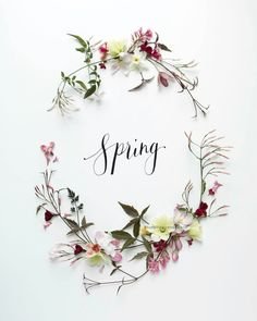 Uploaded by Pearl Aranda. Find images and videos about spring, easter and happy easter on We Heart It - the app to get lost in what you love. Love Flowers, Spring Flowers, Beautiful Flowers, Spring Quotes Flowers, Spring Blooms, Hello Spring Wallpaper, Frühling Wallpaper, Julia Smith, Hello March