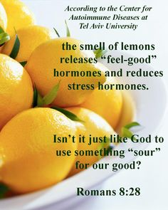 Lemons--one woman was able to give up 15 years of anti-depressant use by using lemon aromatherapy. God has incredible designs and purposes in His creation.
