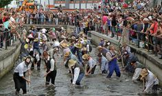 Fishing festival in Memmingen~Germany since 1597 near the City Market Place #biggest trout will be crownded as the Fisher King