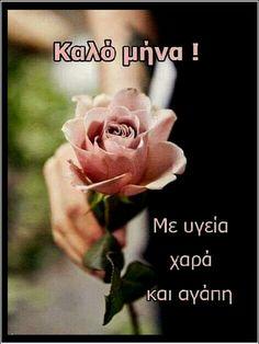 Rose, Flowers, Plants, Roses, Royal Icing Flowers, Flower, Florals, Plant, Bloemen